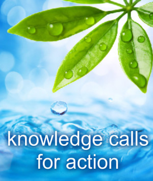 knowledge calls for action